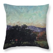Moonlight Ranch Throw Pillow