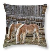 Morgan Horses By The Barn Throw Pillow