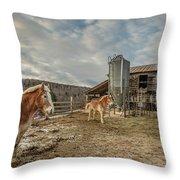Morgan Horses Pomfret Vermont Throw Pillow