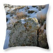 Morning At The Book Cliffs Throw Pillow