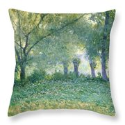 Morning Mist Also Known As Late Spring Throw Pillow