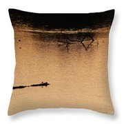 Morning On The River Throw Pillow