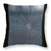 Morning Spider Web Throw Pillow