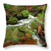Mossy Glen Rollers Throw Pillow