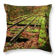 Mossy Train Track In Fall Throw Pillow