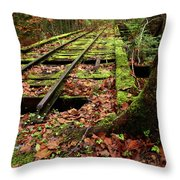 Mossy Train Tracks Throw Pillow