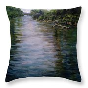 Mount Baker Peekaboo View From Lowell Riverfront Trail Throw Pillow by J Reynolds Dail