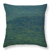 Mount Greylock Reservation's Trees Throw Pillow