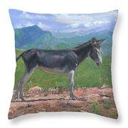 Mountain Donkey  Throw Pillow