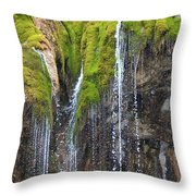 Mountain Flowing 2 Throw Pillow by Angelina Tamez
