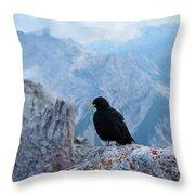 Mountain Jackdaw Throw Pillow