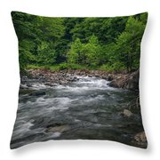 Mountain Stream In Summer #2 Throw Pillow by Tom Claud