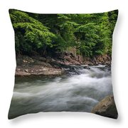 Mountain Stream In Summer #3 Throw Pillow by Tom Claud