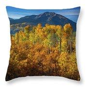 Mountains And Aspen Throw Pillow by John De Bord