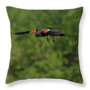 Mr. Red-winged Blackbird In-flight Throw Pillow