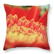 Mum Flower Throw Pillow