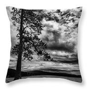 My Favorite Tree Black And White Throw Pillow