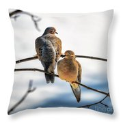 Nap Time Throw Pillow by Lois Bryan