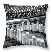 National Cemetery Throw Pillow by Tom Singleton