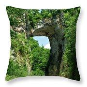 Natural Brige  Throw Pillow