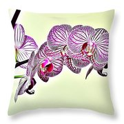 Naturalness And Flowers 37 Throw Pillow