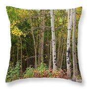 Nature Fallen Throw Pillow