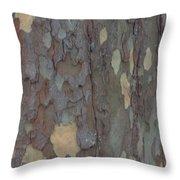 Natures Beautiful Patterns Throw Pillow