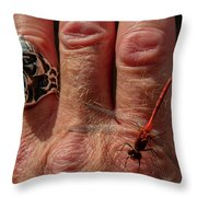 Nature's Dragonfly Throw Pillow