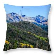 Nature's Splendid Throw Pillow