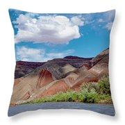 Navajo Rug Throw Pillow