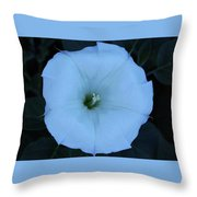 New Mexico Flower Throw Pillow