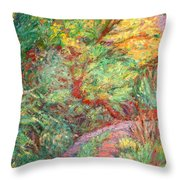 New River Trail Throw Pillow