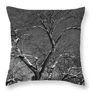 Niagara Falls Winter Textures Throw Pillow