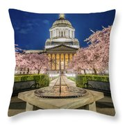 Night At The Capitol Throw Pillow