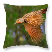 Northern Flicker In Flight Throw Pillow