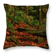Northside Of Mount Greylock At Throw Pillow