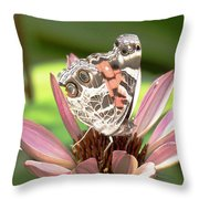 Nose In The Air Throw Pillow by Sally Sperry