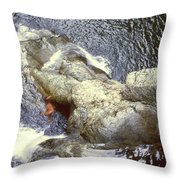 Not Your Average Swimming Hole 3  Throw Pillow