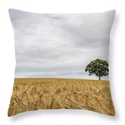 Oak And Barley Throw Pillow by Nick Bywater