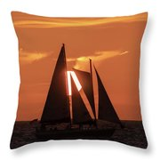 Obscured View Throw Pillow