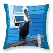 Oceanside Pelican Right  Throw Pillow