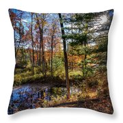 October Late Afternoon Throw Pillow by Kendall McKernon