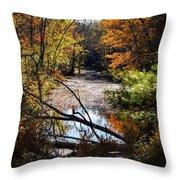 October Window Throw Pillow by Kendall McKernon