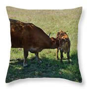 Old And Young Throw Pillow