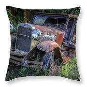 Old Model Aa Ford In The Jungle 2 Throw Pillow
