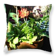 Old Pots New Blooms Throw Pillow