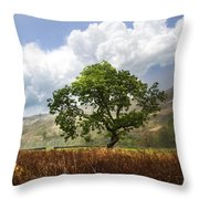 Old Scottish Farmlands Under The Clouds Throw Pillow