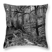Olympic Rainforest Throw Pillow by Jeni Gray