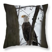 On Morning Watch Throw Pillow