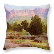On The Chinle Trail Throw Pillow